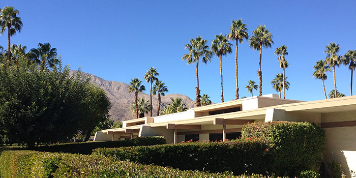 Image Number 1 for Rose Garden in Palm Springs
