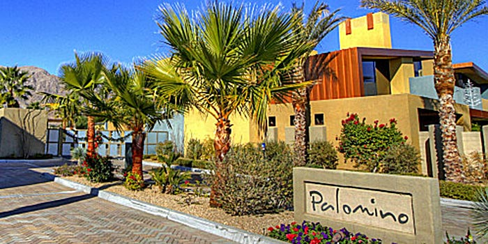 Image Number 1 for Palomino in Palm Springs