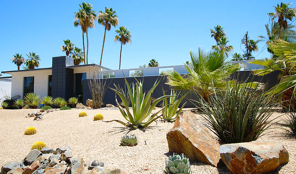 Smart desert landscaping palm springs homes for Garden design with palms